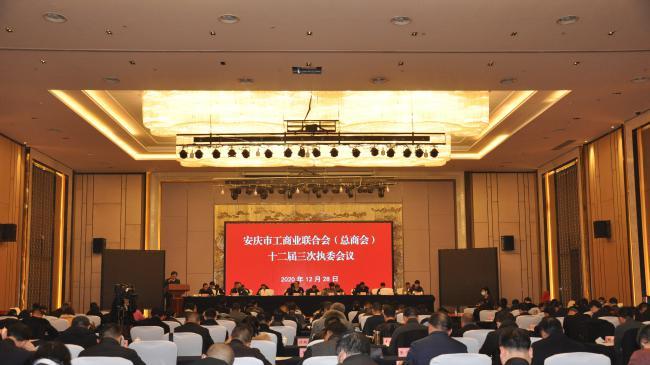 安庆市工商联(总商会)十二届三次执委会议召开